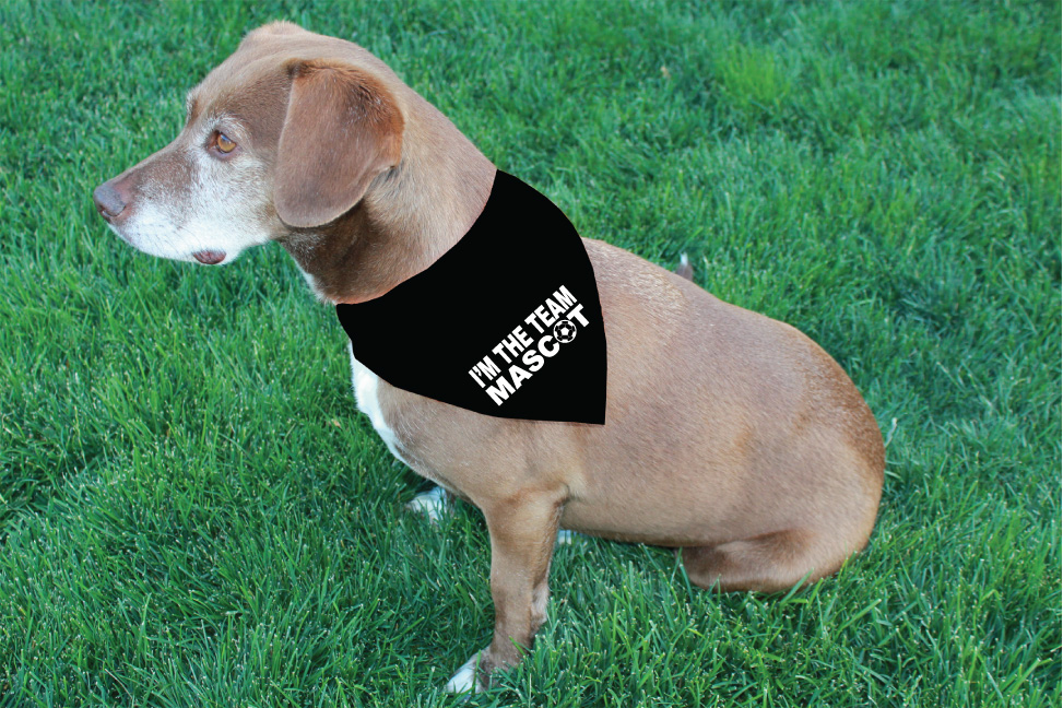 "Soccer Dog Bandana - ""I'm The Team Mascot"" by Code Four Athletics"